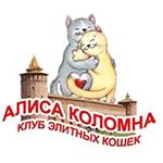 Алиса Коломна